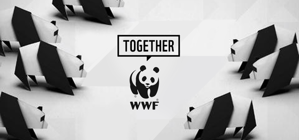 WWF ITALIA festeggia il 50° anniversario con cobranding e licensing